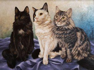 Pintura Gatos