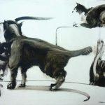 Estudio de cuatro gatos en movimiento