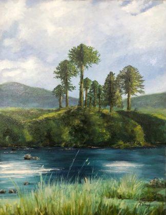 Araucarias a orillas Del Río