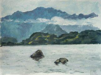 Lago Ranco 1