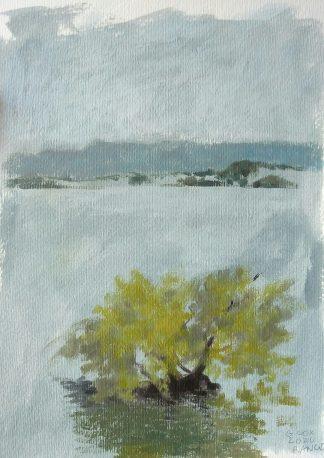 Lago Ranco 2